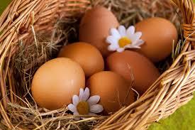 Яйца при запоре